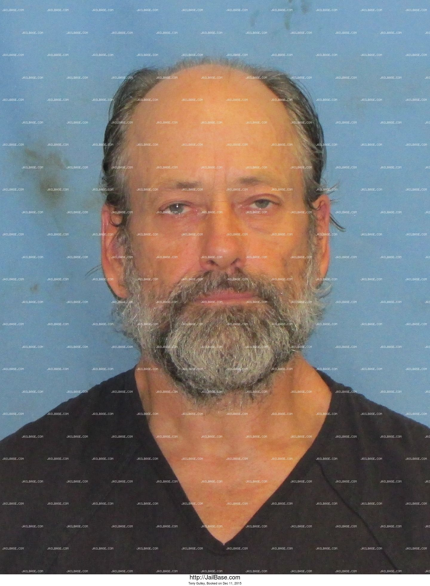 Terry Gulley mugshot picture