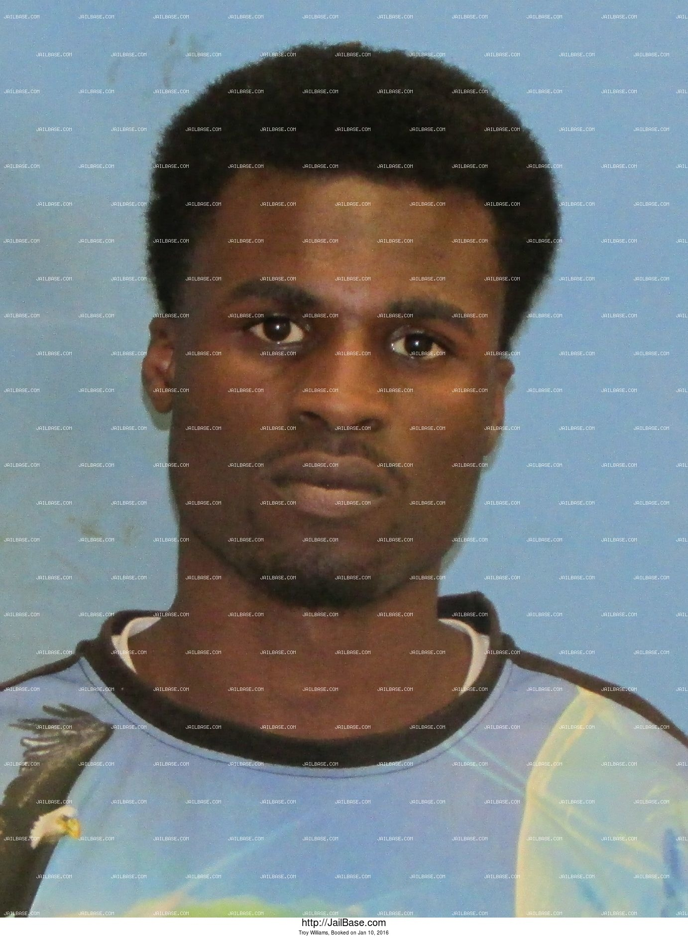 Troy Williams mugshot picture