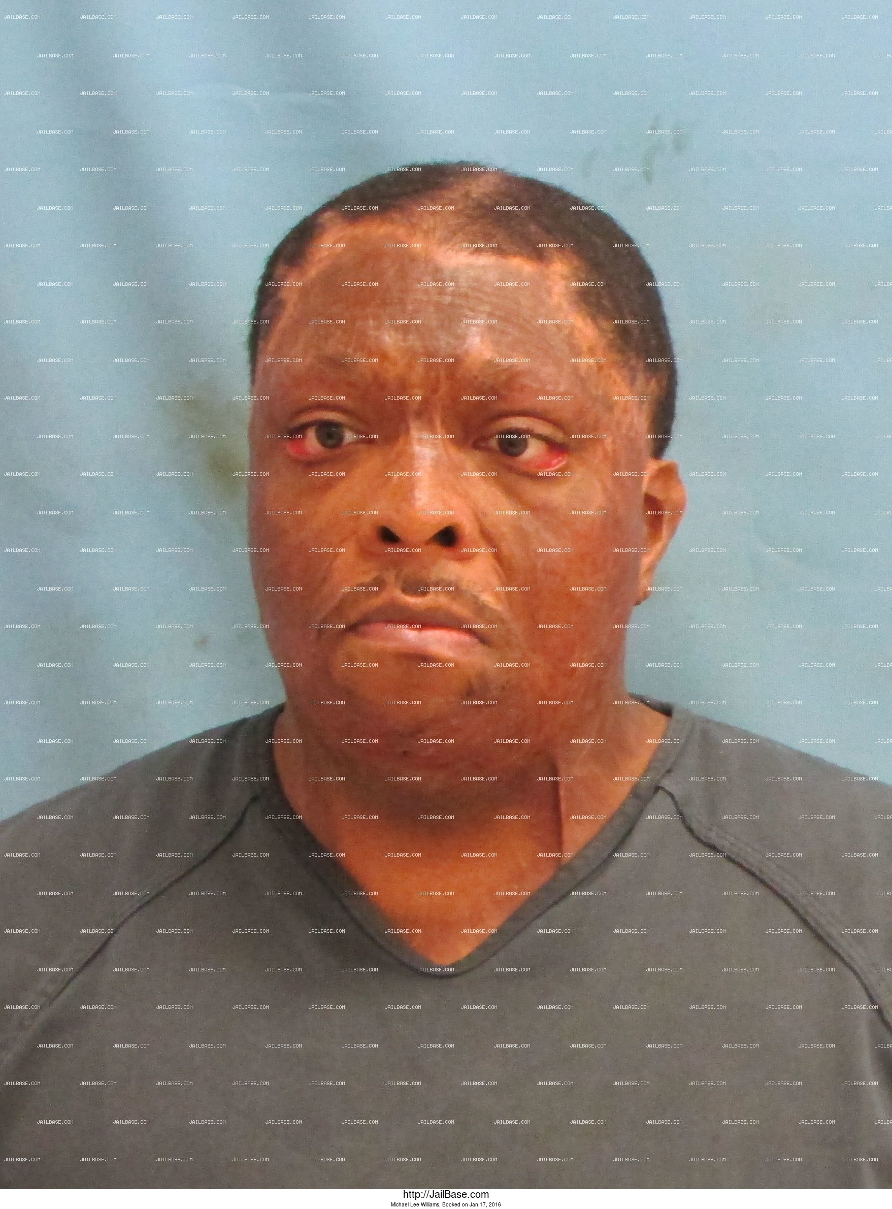 Michael Lee Williams mugshot picture