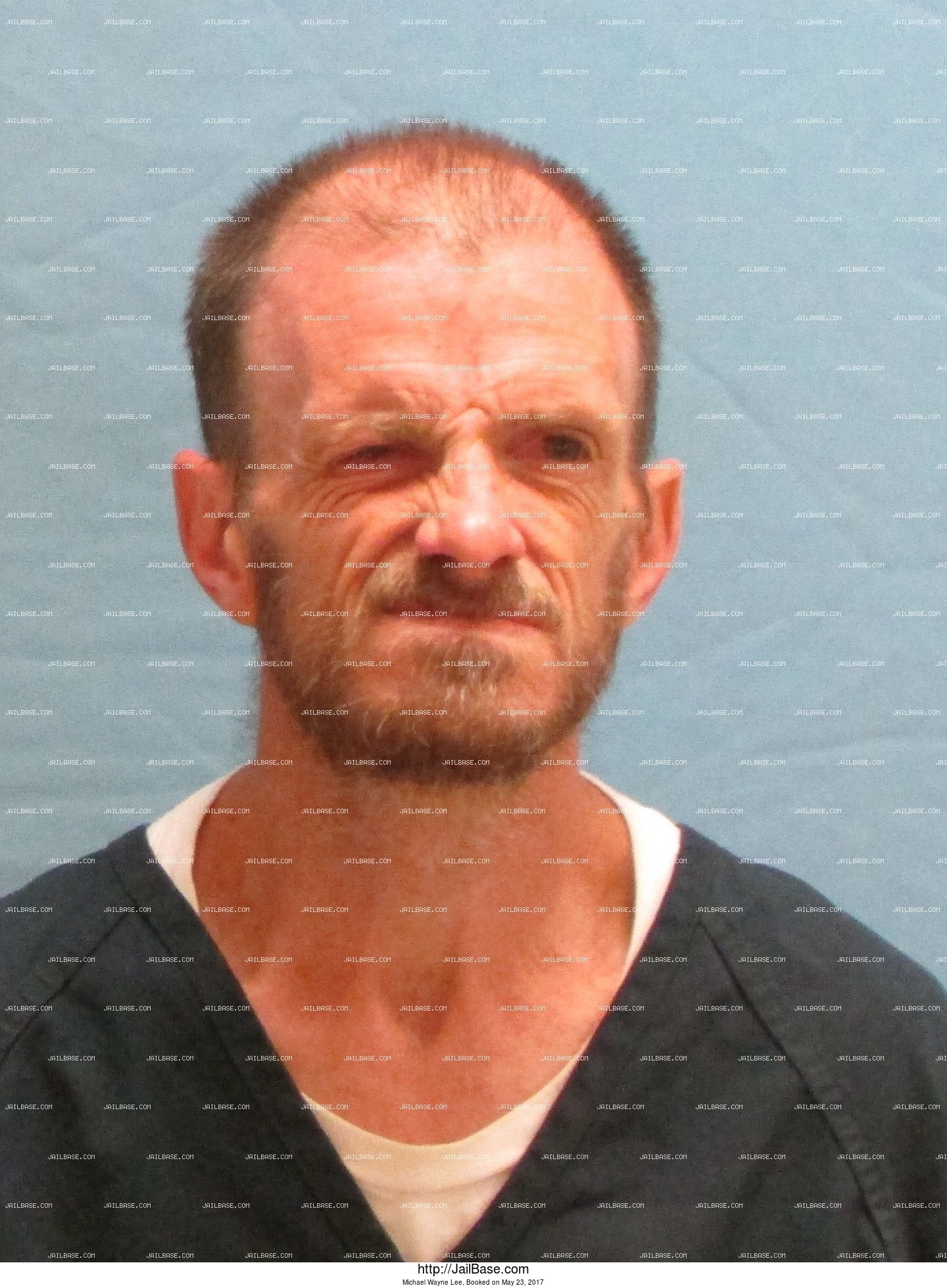 Michael Wayne Lee mugshot picture