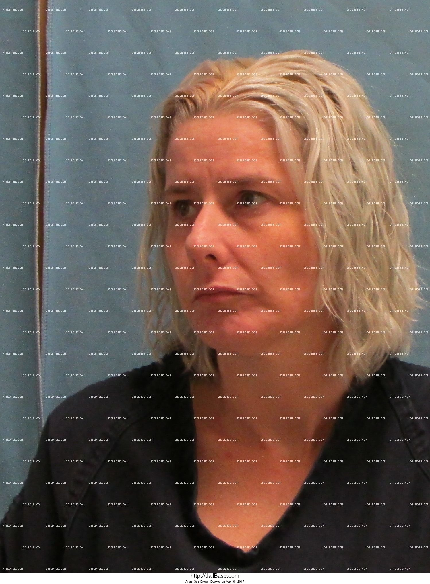 Angel Sue Brown mugshot picture