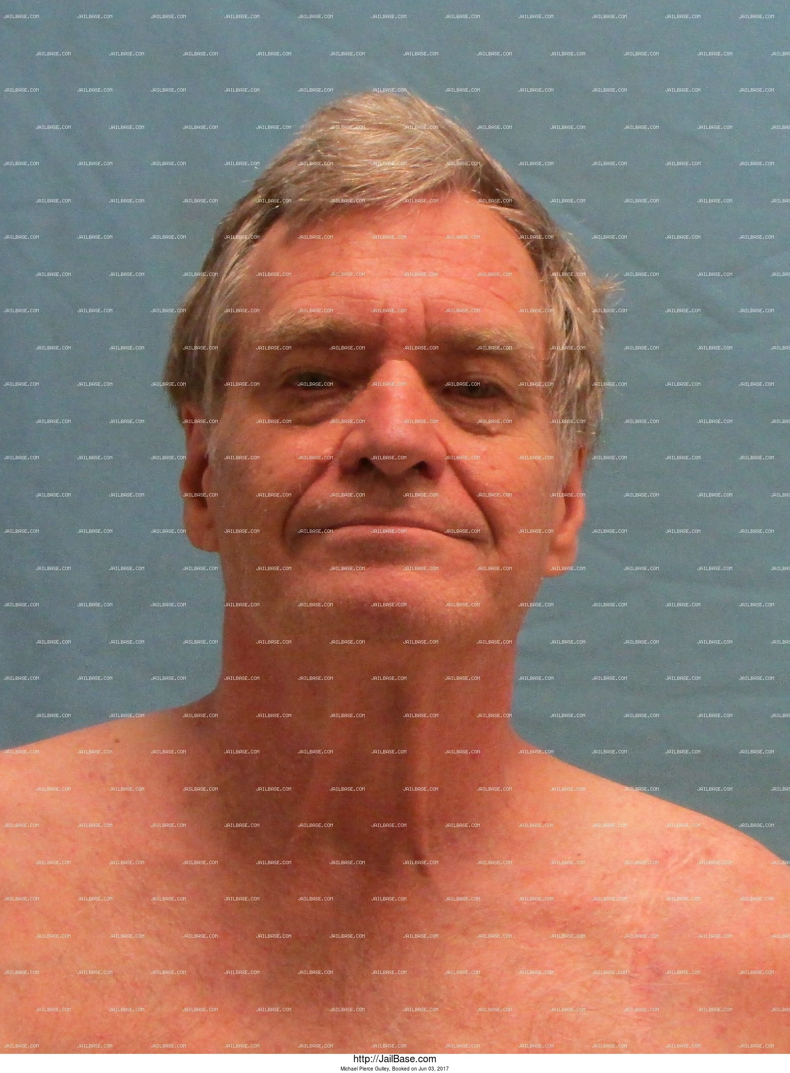 Michael Pierce Gulley mugshot picture