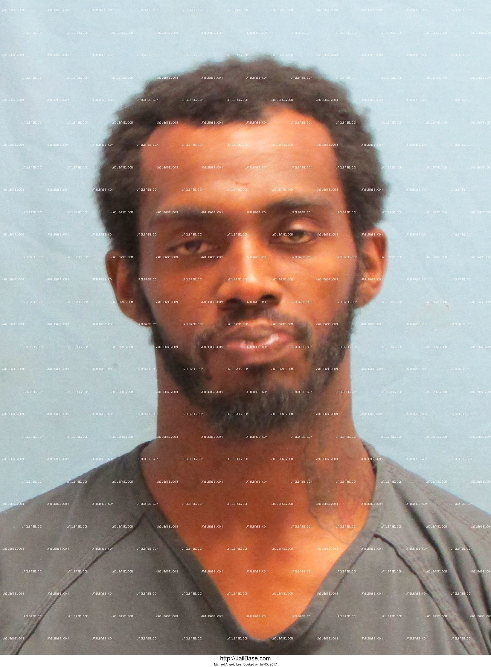 Michael Angelo Lee mugshot picture