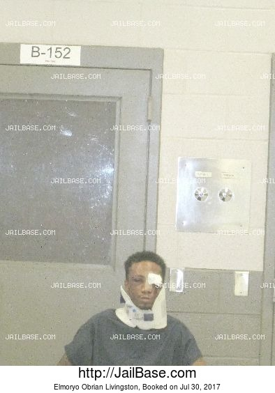 Elmoryo Obrian Livingston mugshot picture