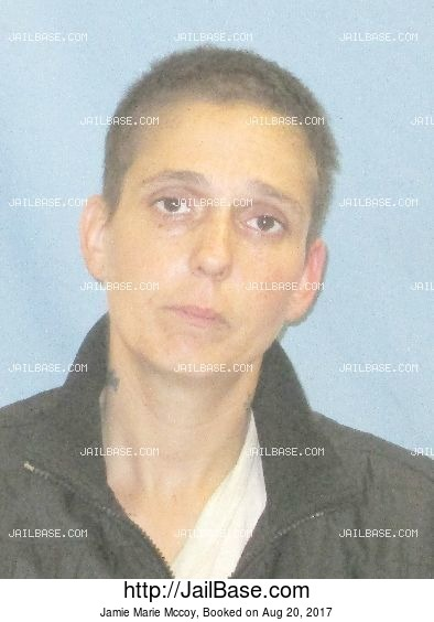 Jamie Marie Mccoy mugshot picture