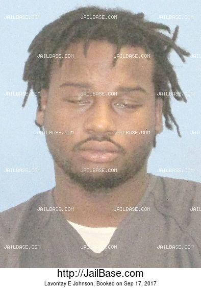 Lavontay E Johnson mugshot picture