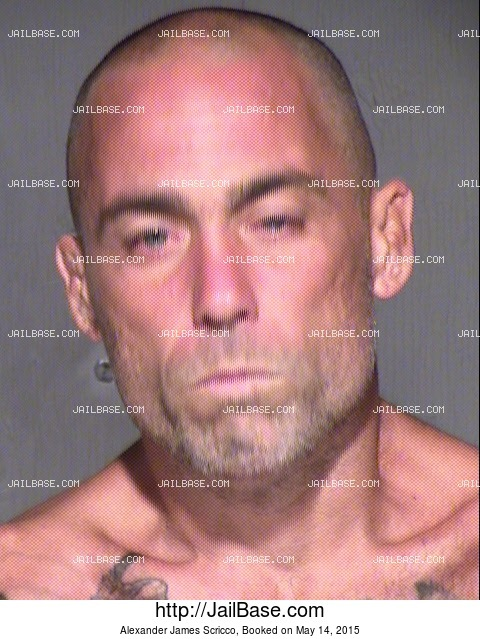 ALEXANDER JAMES SCRICCO mugshot picture