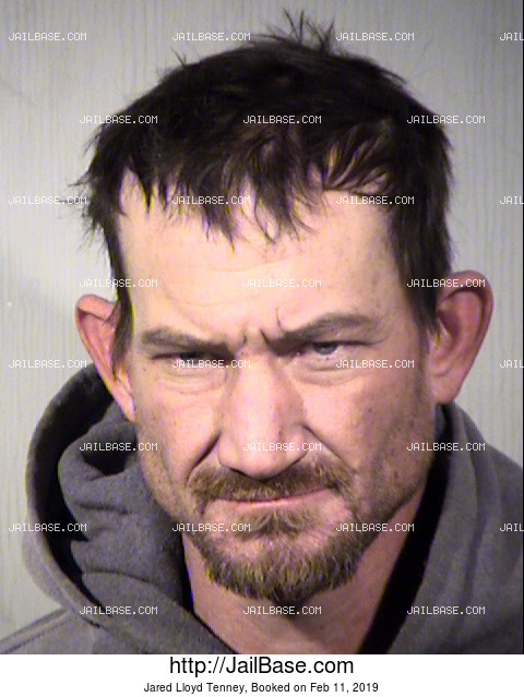 Jared Lloyd Tenney mugshot picture