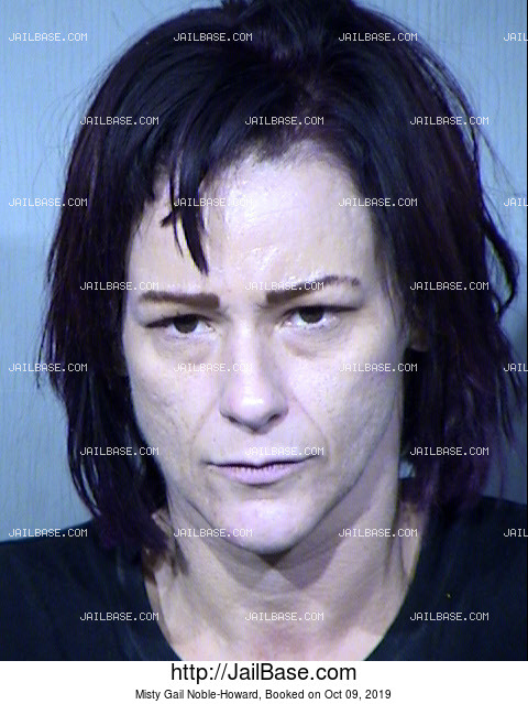 Misty Gail Noble-Howard mugshot picture