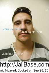 Jerrid Nicaved mugshot picture