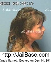 Candy Harnett mugshot picture