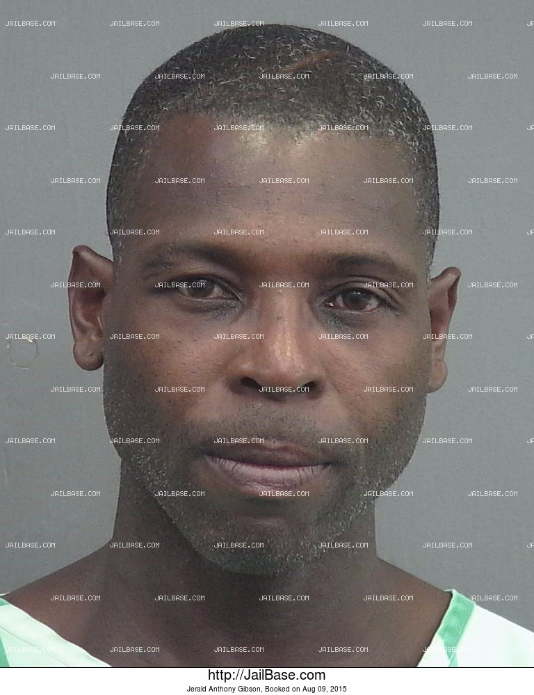 Jerald Anthony Gibson mugshot picture