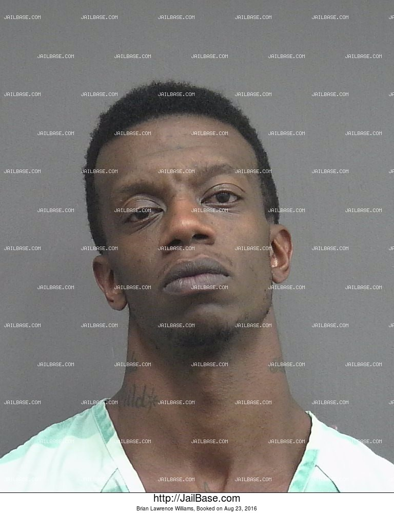 Brian Lawrence Williams mugshot picture