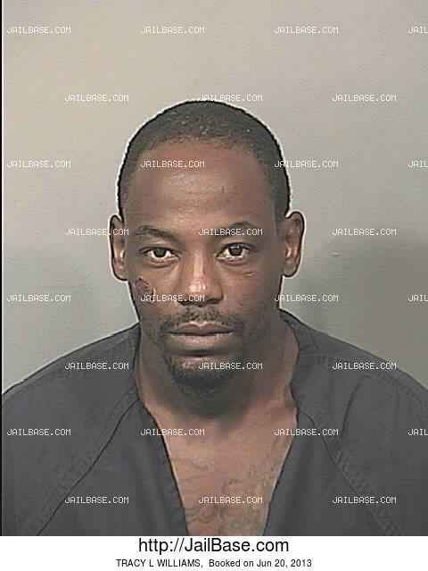 TRACY L WILLIAMS mugshot picture