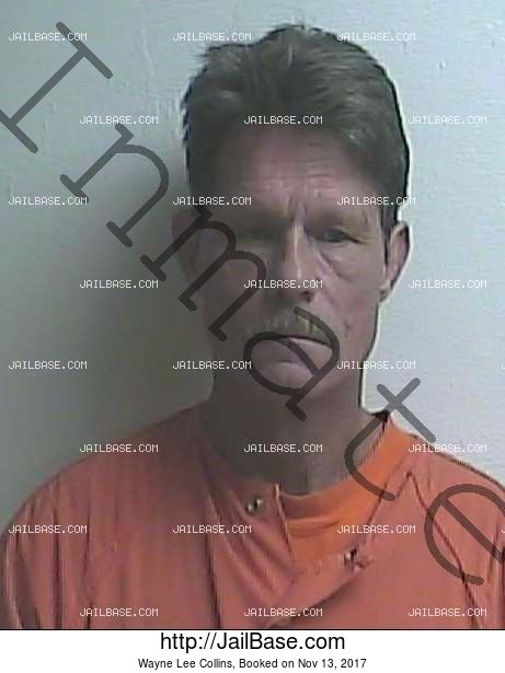 WAYNE LEE COLLINS mugshot picture