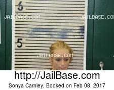 Sonya Carnley mugshot picture