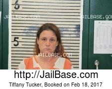 Tiffany Tucker mugshot picture