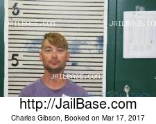 Charles Gibson mugshot picture