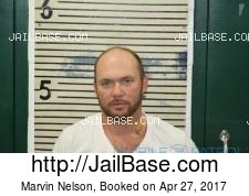 Marvin Nelson mugshot picture