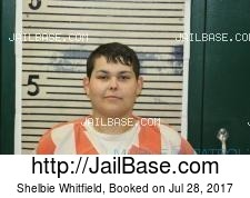 Shelbie Whitfield mugshot picture