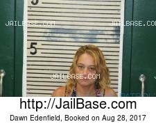 Dawn Edenfield mugshot picture