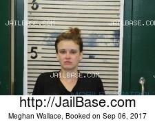 Meghan Wallace mugshot picture