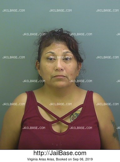 VIRGINIA ARIAS ARIAS mugshot picture