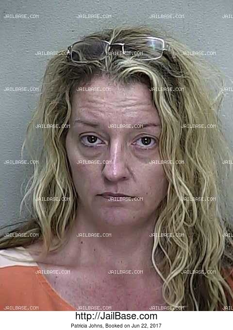 PATRICIA JOHNS mugshot picture