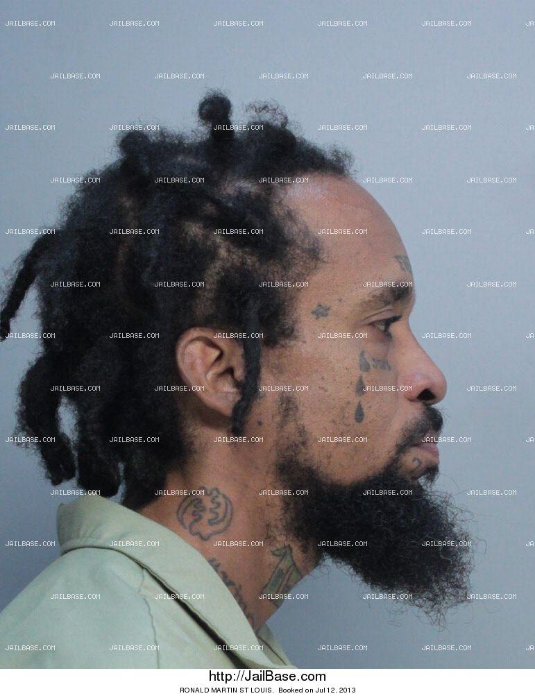 RONALD MARTIN ST LOUIS | Arrested on July 12, 2013 | JailBase