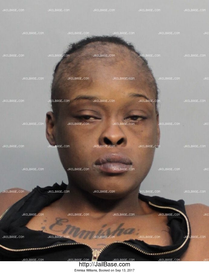 Emmisa Williams mugshot picture