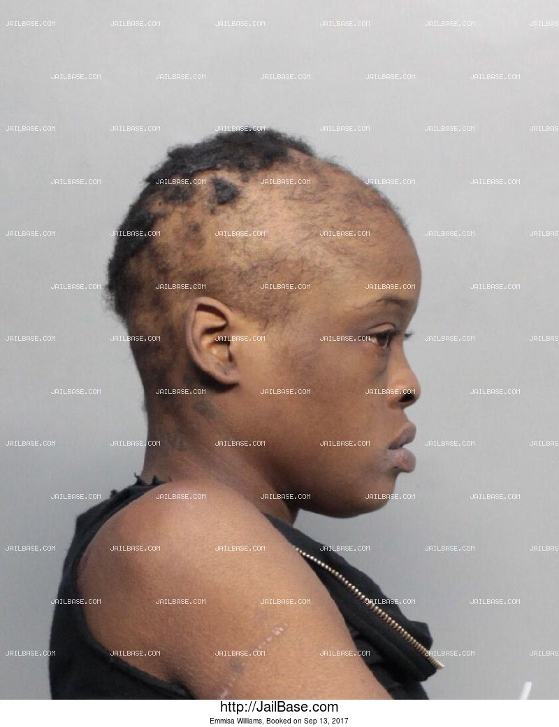 emmisa williams mug shot image