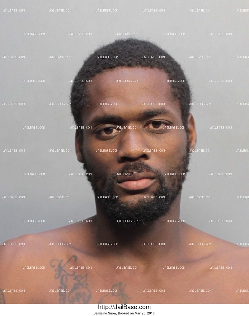JERMAINE SNOW mugshot picture