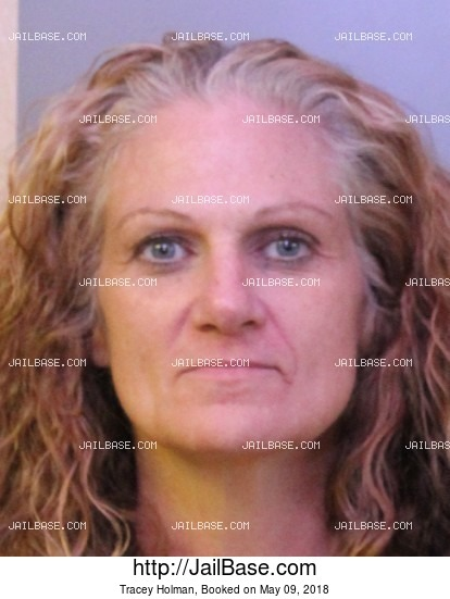 TRACEY HOLMAN mugshot picture