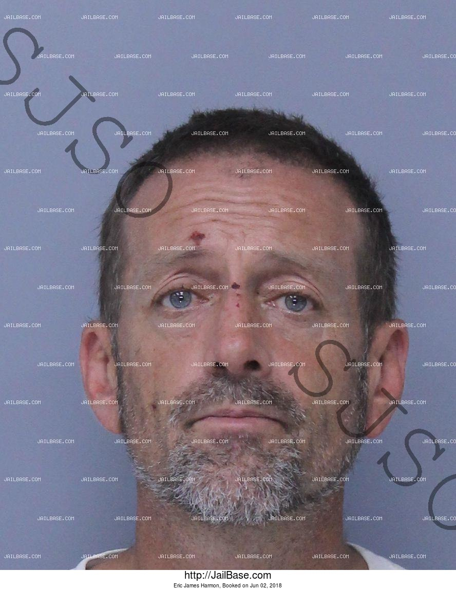 ERIC JAMES HARMON mugshot picture