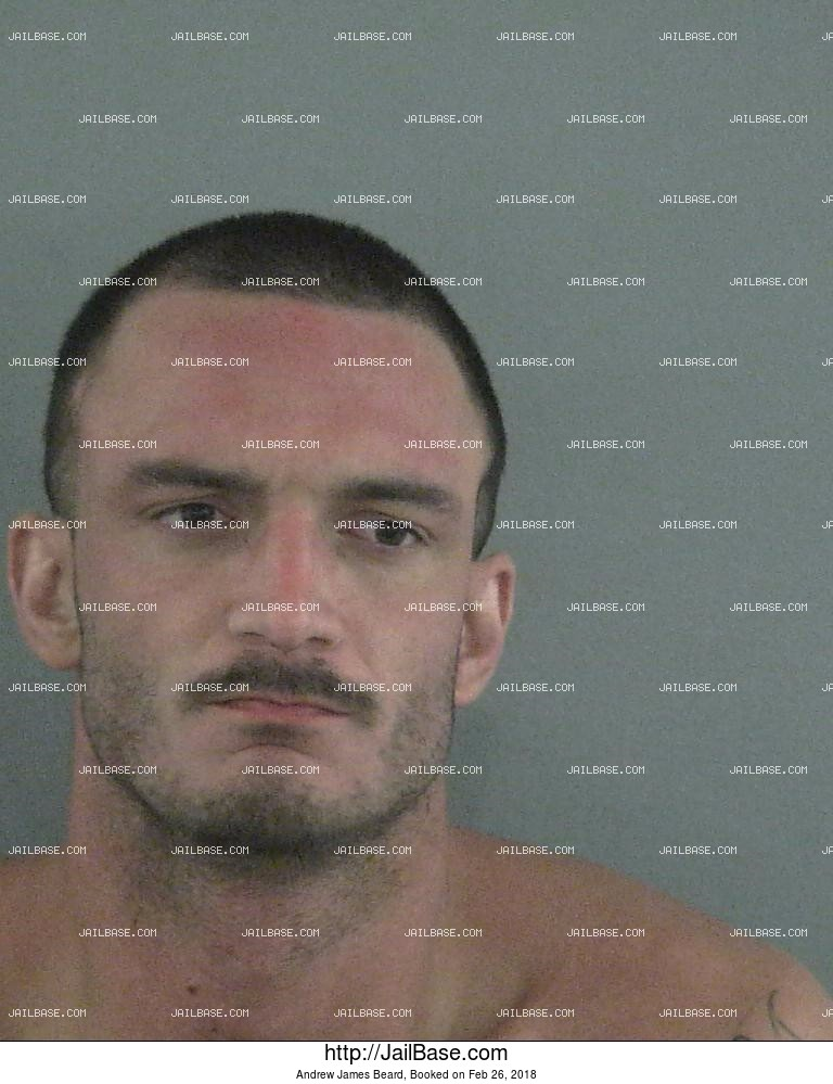 ANDREW JAMES BEARD mugshot picture