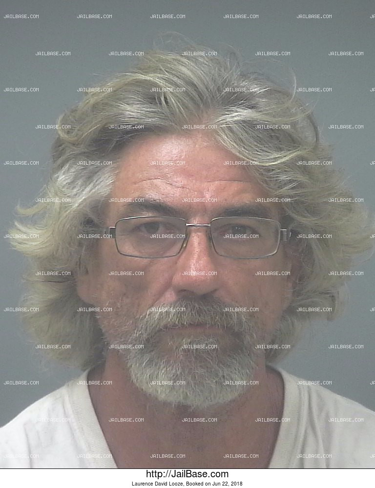 LAURENCE DAVID LOOZE mugshot picture
