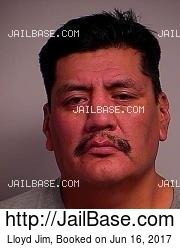 Lloyd Jim mugshot picture