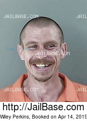 Wiley Perkins mugshot picture