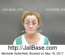 Mechelle Satterfield mugshot picture