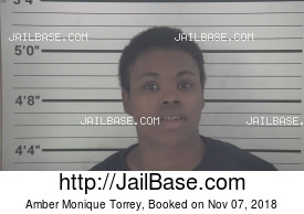 AMBER MONIQUE TORREY mugshot picture