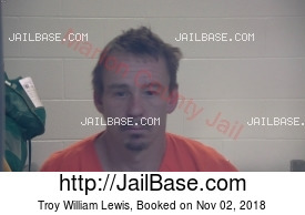 TROY WILLIAM LEWIS mugshot picture