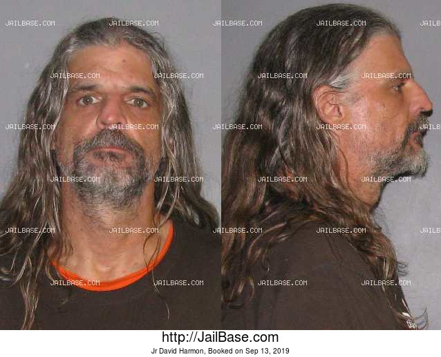 JR DAVID HARMON mugshot picture