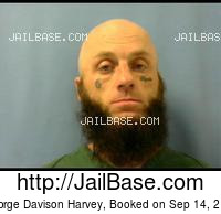 GEORGE DAVISON HARVEY mugshot picture