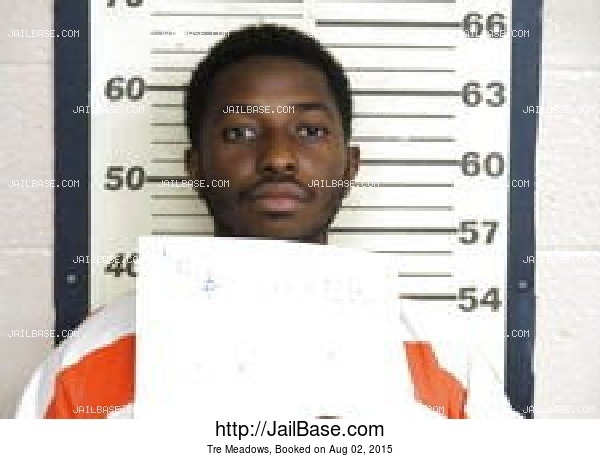 Tre Meadows mugshot picture