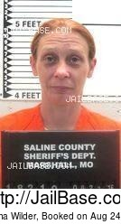 Christina Wilder mugshot picture