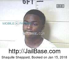 Shaquille Sheppard mugshot picture