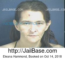 Eleana Hammond mugshot picture