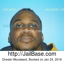 Chester Woodward mugshot picture