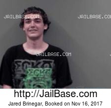 Jared Brinegar mugshot picture