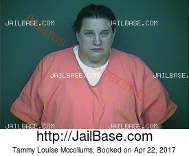 TAMMY LOUISE MCCOLLUMS mugshot picture